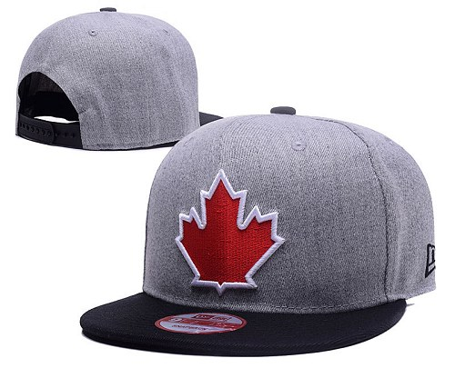 MLB Toronto Blue Jays Stitched Snapback Hats 035